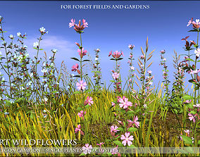 Low Polygon 3D Wild Campion Flowers for Games game-ready 1