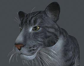 3D LION-006