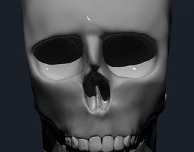 skull 3d 3D print model