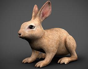 3D model low-poly rabbit