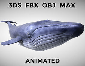 3D model animated Blue Whale - with Octane Support
