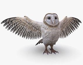 Barn Owl Low Poly 3D asset