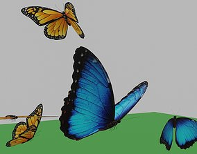 3D model butterflies animation