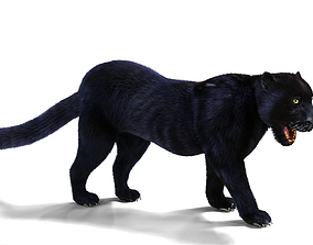 3D asset Realistic Fur Black panther Rigged