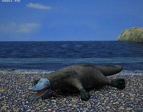 3D Platypus