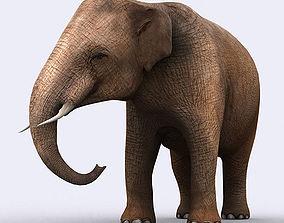 3DRT - Elephant animated low-poly