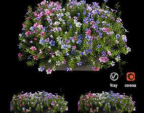 Plant Flower set 04 3D model