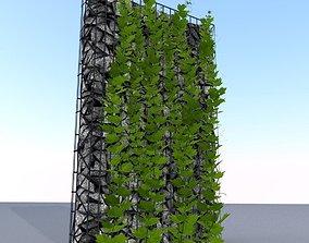 Vines and Gabion Version 1 3D model