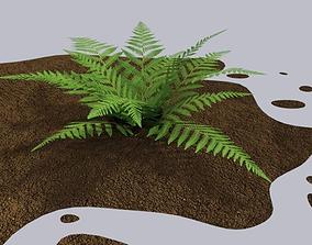 Fern bush 3D model game-ready