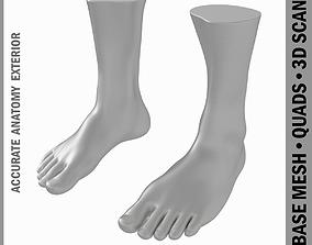 Male Realistic Feet Base Mesh 3D