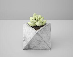 3D model Octaeder Concrete Potted Cactus