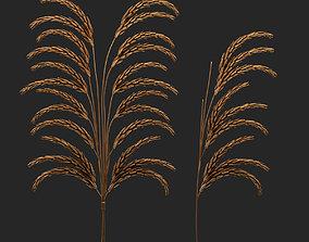 NAGA decor wheat set 3D model