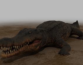 Crocodile Rigged Low Poly 3D model