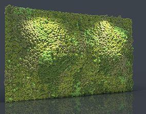 3D Moss Wall