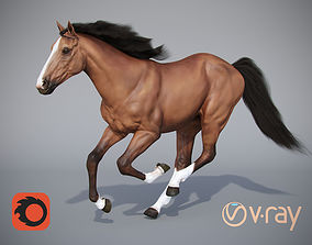 horse animals 3D model low-poly