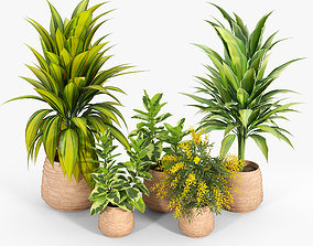 3D model Tula Planter Collection