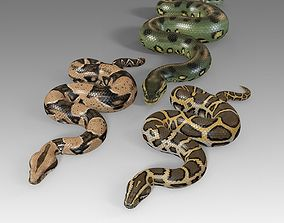 Pythons Vol 1 Rigged 3D model realtime
