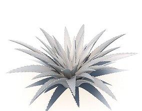 3D Aloe