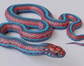 Animated San Francisco Garter Snake 3D model