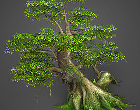 Game Ready Low Poly Tree 01 3D asset