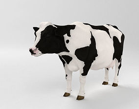 Cow HD detailed 3D
