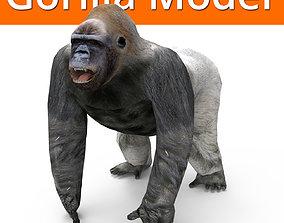 3D Model Gorilla game ready VR / AR ready