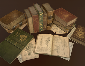 Old Books set - PBR Game Ready 3D model