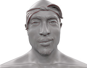 2 Pac 3D print model