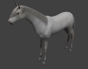 3D model animated realtime Horse trot