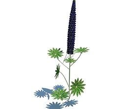 Purple Flower Plant 3D model