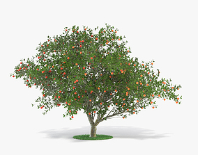 Apple Tree nature 3D