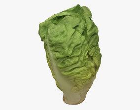 3D Salad Heart