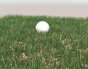 Grass terrain 3D model