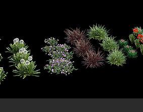 Australian Bush and Grass kit 1 3D model