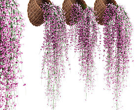 3D model Hanging plants in wicker pots v2