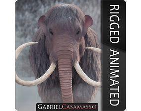Woolly Mammoth - Mammuthus primigenius 3D model