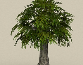 Game Ready Tree 11 3D model