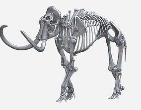 Mammoth Skeleton Highly Detailed 3D print model
