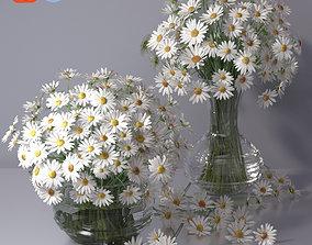 Realistic Daisy Chamomile Bouquet Vase 3D model