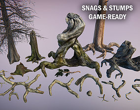 3D asset Snags and roots