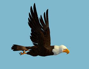 Eagle hawk 3D animated