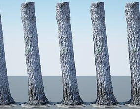3D model Tree Trunk - 08