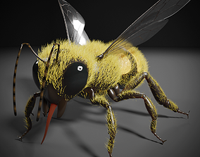 Honey bee 3D rigged