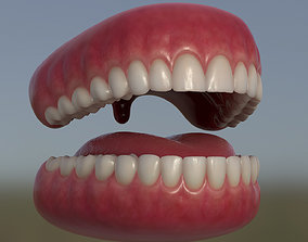 3D asset Teeth with gums and Tongue