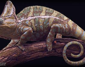 3D print model Chameleon