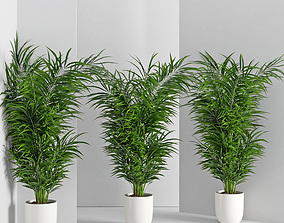 3D model Houseplant 32 wall Collisions