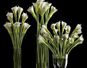calalilly white set 3D