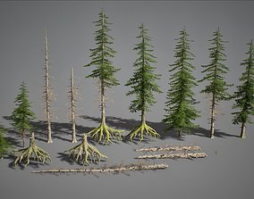 UE4 - Fir Trees 3D model