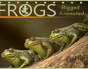 3D model Frogs