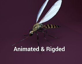 Mosquito 3D model animated